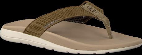 green UGG shoe TENOCH HYPERWEAVE